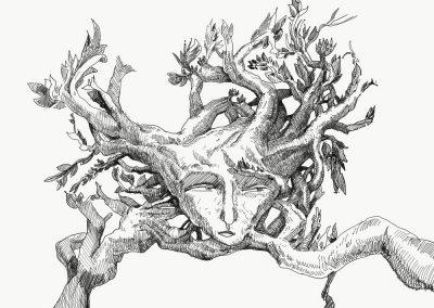 tree-face